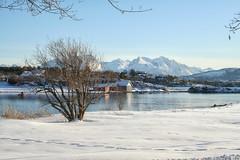 Walking in a winter wonderland (larigan.) Tags: winter snow scenic boathouses naust sunnmrsalpene larigan phamilton borgundfjord sunnmrealps ginordicjan12