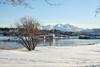 Walking in a winter wonderland (larigan.) Tags: winter snow scenic boathouses naust sunnmørsalpene larigan phamilton borgundfjord sunnmørealps ginordicjan12