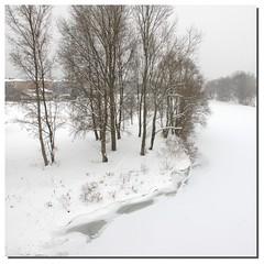 Fiume Reno on ice (Cristina Negrini) Tags: winter italy snow ice italia fiume neve bologna reno inverno ghiaccio