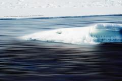 In Motion (Thousand Word Images by Dustin Abbott) Tags: winter motion ice naturallight rapids m42 manualfocus petawawa ontariocanada petawawariver alienskinexposure canoneos60d adobephotoshopcs5 thousandwordimages adobelightroom4 supertakumar135mmf35m42