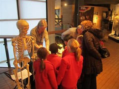 Dr W looks on as the school group learn about bone