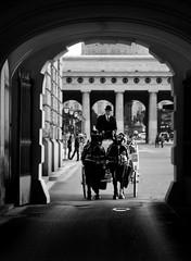 Vienna (giuliafaillaci) Tags: vienna blackandwhite white black austria bn gita bianco nero viaggio ultimo biancoenero anno distruzione