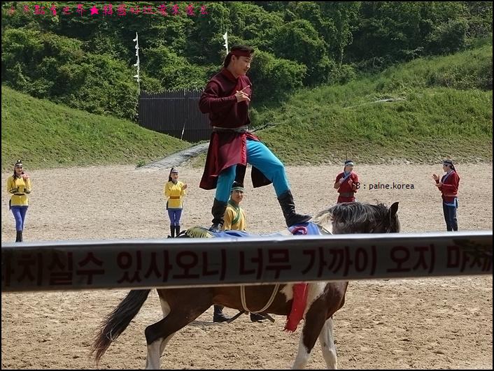 濟州The馬park (16).JPG