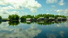 sangker river (Kelly Rene) Tags: blue trees homes sky pet pets color reflection animals clouds landscape cambodia southeastasia day outdoor sunny kh battambang indochina sangkerriver