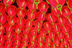 Rotes Meer (big_banger) Tags: red rot temple taiwan nightmarket taipei lantern hdr lampion tempel teipeh