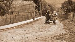 Street At Noon - Utca dlben (Zsofia Nagy) Tags: street old rural strada village outdoor utca transylvania erdly falu ourdailychallenge