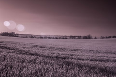 Landscape in Saxony (scuthography) Tags: sunset landscape saxony sachsen infrared tone infrarot scuthography