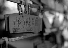 Wishes (RunnyInHongKong) Tags: film japan mediumformat tokyo blackwhite 6x45 meguro fujiacros100 mamiya645protl nikoncoolscan9000 mamiyasekor80mmf19 nikonscan41