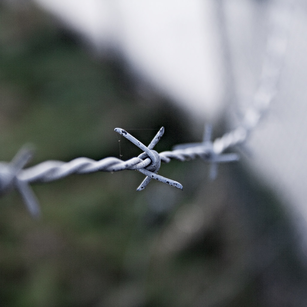 The World\'s most recently posted photos of barbedwire and cobweb ...