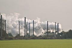 Loads Of Steam (P.A.King) Tags: train smoke transport tracks rail railway steam rails locomotive tornado tallington peppercorn eastcoastmainline lner ecml 462 uksteam cathedralsexpress a1class 60163 24112011 lolhambridges