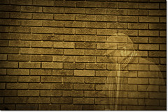 another brick in the wall 2 (one_man's_life) Tags: ourdailychallenge gratutudeprojectday22 gwkoiter