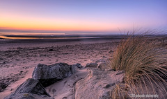 the beach (gobayode photography...times) Tags: seascape beach nature landscape beachsunset thebeach merseyside beachgrass pinkbeach beachrocks crosbybeach sunsetcolours beachelements