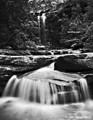 National Falls - Royal National Park (Tim Sanusi) Tags: blackandwhite bw waterfall interesting sydney australia slowshutter dreamy sutherland royalnationalpark nationalfalls