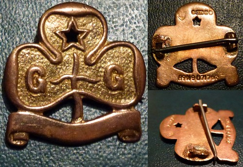 "Gold Girl Guides Trefoil Badge ""http://girlsguidebadge.blogspot.com"""