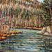 South Creek, oil on canvas. Artist: Nancy Brossard