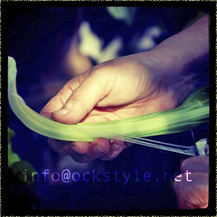Family album - Preparing some Swiss Chard ...