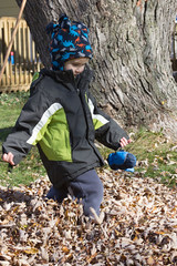 Leaf Pile #1 (Craig Dyni) Tags: autumn boy fall colin finn dyni
