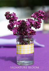 Los Altos Wedding Floral, Purple Lilacs (Signature Bloom) Tags: pictures flowers wedding decorations flower floral for design purple designer events sanjose images lilac designs florist vendor siliconvalley weddings bridal decor peninsula southbay ideas weddingflowers weddingphotos losaltos floraldesign sanjoseca specialevents 94024 favours weddingideas weddingfavors weddingfavours bridalflowers weddingdecorations floraldesigner flowerdesign losaltosca 95121 weddingflorist purplewedding weddingfloral weddingvendor uniqueweddingideas weddingfavorideas springweddingflowers sanjoseflorists sanjoseweddingflowers signaturebloom wwwsignaturebloomcom sanjoseweddingflorist bridalflorist weddingfloristsanjose weddingflowerssanjose weddingflowerssanjoseca sanjoseweddingfloral weddingfloralsanjoseca weddingflowerslosaltosca losaltosweddingflorists losaltosflorist