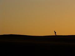 Run! (Nanix10) Tags: dune duna boy menino southafrica garoto run africadosul running easterncape correr corre beach praia sunset pordosol