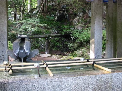 森泉 画像11