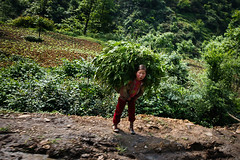车窗外的孩子-03 (Zhou Mingjia) Tags: china mountain portraits children farmers photojournalism farmer 中国 yunnan press 人物 villager 纪实摄影 云南 孩子 农民 documentaryphotography 昭通 pressphotography zhaotong 新闻摄影