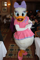 New Year's Day Brunch at Inventions (Disney Dan) Tags: new winter paris france restaurant hotel europe day disneyland character january eu newyear disney daisy brunch dining characters inventions years dlh newyearsday 2012 disneylandparis dlp disneylandresortparis characterdining daisyduck disneycharacters disneycharacter disneypictures disneyparks newyearsdaybrunch disneyphotos dlpr