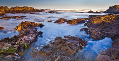 Tidal Colors-Asilomar State Beach (Images by Doug Jones) Tags: ocean california seascape beach dawn coast rocks surf tide montereybay pacificgrove asilomar tidepool