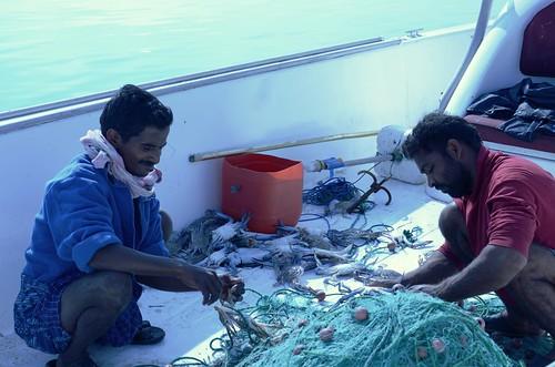Cleening the nets ©  Still ePsiLoN
