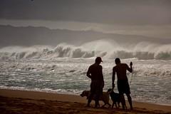Hawaii2-3