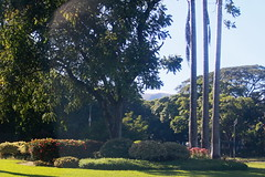 Parque (Walter Oscar La Colla) Tags: park trip travel family wedding party summer vacation people music woman usa costa sun storm sexy art love beach nature water argentina smile sport sex night clouds photoshop canon eos photo amazing buenosaires nikon erotic shot playa class nubes vacaciones soe hollyday aclass naturesfinest blueribbonwinner 50d atlntica supershot a xti bej masterphotos 400d mywinners abigfave platinumphoto ultimateshot macromarvels betterthangood theperfectphotographer mardecobo rubyphotographer