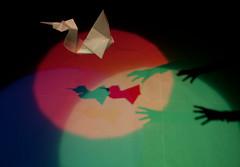 RGB Swan lake (Mjolkis) Tags: white reflection photography swan origami colours rgb cmyk