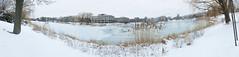 Day 15 - Lakefill Panorama (nkadu) Tags: winter panorama snow ice weeds ducks northwestern lakefill