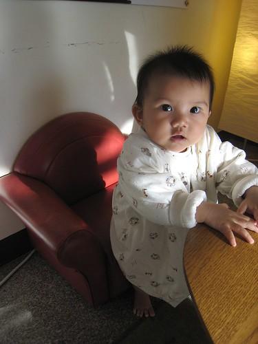 小娃兒專屬單椅!!