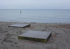 Le piquet aquatique (' m x b c h r) Tags: two lake beach grey gris hiver lac grau lausanne deux lman plage zwei