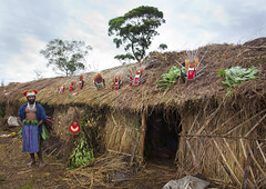 Long House with headresses in Mount Hagen festival singsing - Papua New Guinea (Eric Lafforgue) Tags: culture tribal papou tribes png tradition tribe papuanewguinea ethnic tribo headdress headwear papu ethnology headgear tribu  3007 papuaneuguinea papuanuovaguinea  ethnie papouasienouvelleguine papuaniugini papoeanieuwguinea papusianovaguin papuanyaguinea   papanuevaguinea    paapuauusguinea  papuanovaguin papuanovguinea   papuanowagwinea papuanugini papuanyguinea