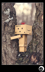 5/52: Danbo in Tree City (aebphoto) Tags: winter tree canon bokeh annarbor bark treehugger 552 week5 danbo canon50mm saturdayinthepark annarbormi niftyfifty treecityusa project52 danboard mcpactions rebelxsi week552 rebel450d cranbrookpark revoltechdanbo worldofdanbo danbo52 mcpfinishingaction danboproject52