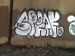 SPEAK x ISER (billy craven) Tags: chicago graffiti speak gi tdc kwt iser 2nr nswb