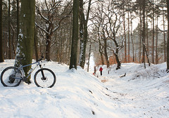 Bike MTB Snow (Riemanello) Tags: trip snow denmark vinter mtb singular