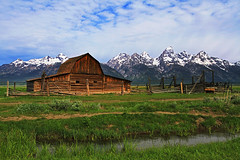 Bliss (Peter J Coskun photography) Tags: park morning summer snow mountains nature barn landscape spring wildlife rocky grand row national mormon wildflowers wyoming teton bison