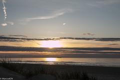 De Panne-8 (marco_dcn) Tags: sunset de soleil coucher panne