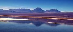 Salar de Atacama Laguna Chaxa (Made Bulkes) Tags: chile mountain landscape volcano desert outdoor flamingo salt atacama andes desierto laguna salar flamenco sal cordillera altiplano volcan chaxa saltflat antofagasta rosado lagunachaxa