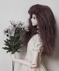 ertz (michellebebe) Tags: doll bjd hybrid abjd dollleaves dollchateau