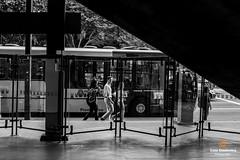 Down and watching (Luiz Contreira) Tags: street brazil people bw bus southamerica brasil canon blackwhite pessoas sopaulo streetphotography pb rua autobus pretoebranco amricadosul fotografiaderua brazilianphotographer fotgrafosbrasileiros canon6d
