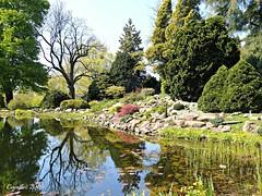 Vijver en rotstuin Arboretum Den Dreijen - Pond Arboretum Den Dreyen (Cajaflez) Tags: flowers trees spring pond bomen arboretum printemps bloemen vijver reflectie voorjaar fruhling reflecties rotstuin arboretumdendreijen