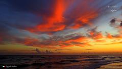 I COLORI DEL CIELO ALL' ALBA !       explore. (Salvatore Lo Faro) Tags: italy nature canon italia nuvole mare alba natura cielo rosso puglia spiaggia rodi salvatore sabbia gargano g16 risacca lofaro rossomattino