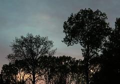 Sunset begins (RPahre) Tags: trees sunset ontario canada minnesota grandportage fortcharlotte grandportagenationalmonument