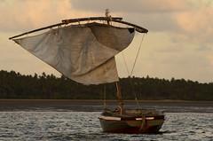 Barco (padraicsmeehan) Tags: ocean africa cruise sunset praia beach rural boats coast boat fishing barco barcos outdoor indianocean pôrdosol seafood mozambique inhambane moçambique tofo southernafrica searesort oceanoíndico southeasternafrica diversityscuba baiadeinhambane