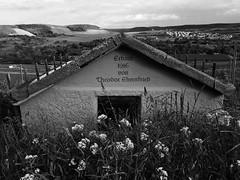 Weinberghtte (olipennell) Tags: monochrome landscape blackwhite vineyard htte landschaft weinberg iphone neckarsulm schwarzweis scheuerberg