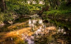 River (Stphane Slo) Tags: longexposure france river landscape eau pentax rivire paysage campagne printemps ain fil poselongue nd1000 sigma1750f28 pentaxk3ii