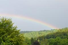 Freiburg Rainbow (allanimal) Tags: rainbow weather stockcategories afszoomnikkor2470mmf28ged